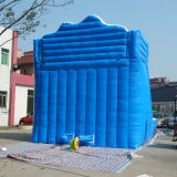 Fabrik-direkter Verkaufs-im Freien Handelsgüte-riesiges aufblasbares Wasser-Plättchen