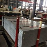 Panneau composé d'aluminium/en aluminium/Acm