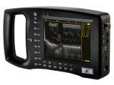 O sistema de ultra-som 3.100 Wed com identificação automática e Beam-Forming totalmente digital