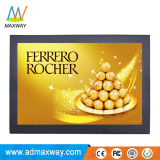 Hoge Helderheid 12 de Monitor van de Duim TFT LCD met VGA HDMI DVI (mw-123MBH)