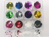 Hearth & Cross Glitter couleur pure mixtes pour Nail Art et ongles Beauté 12 couleurs kg emballage
