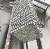 Гранит Brown китайской классики для сляба строительного материала и плитки (G664)