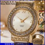 ODMのステンレス鋼の女性方法偶然の腕時計(WY-P17007B)