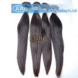 Горячие продавая индийские волосы от Kbl
