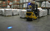 Indicatore luminoso pedonale del punto blu di vita sicura LED del magazzino per il camion