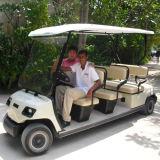 Elevadores eléctricos de 8 Pessoa Go Kart