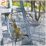 Câble en acier inoxydable de la corde les animaux de zoo de simulateurs d'un balcon Mesh