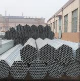 1inch 1.5inch Od galvanizzato intorno al tubo d'acciaio/tubo per la serra