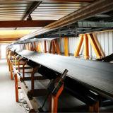 Kaltes beständiges Förderband/Gewebe-Förderband/Polyester, das Riemen übermittelt