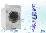 Gaz/vapeur industrielle/dessiccateur électrique pour la vente