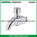 L'ottone di lucidatura di qualità di OEM&ODM ha forgiato il rubinetto (AV2053)