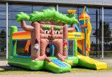 Замок Fairyale надувные Bouncer прыжком Combo для продажи CB2901