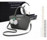 Signora di cucitura classica Handbag di modo della cinghia con Nizza fascino (WDL0201)