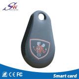 접근 제한을%s 유일한 125kHz Em4100 관례 RFID 에폭시 Keychain