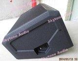Stx815m maximales Berufslautsprecher-System