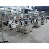 Installation de mise en bouteille automatique de boisson d'usine de fournisseur d'or