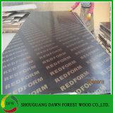 18mm d'Eucalyptus de coffrage en contreplaqué de base