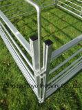 위원회 또는 양우리 /Sheep 장애물 또는 양 문을 검술해 최신 직류 전기를 통한 금속 양