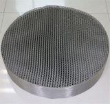 imballaggio strutturato della torretta dell'acciaio inossidabile 304L