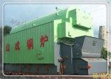 Legno e caldaia a vapore infornata carbone del pacchetto per la fabbrica della tessile