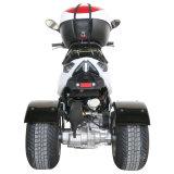 Trike를 기우는 150cc