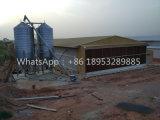 Chambre de poulet ouverte de structure métallique de mur latéral