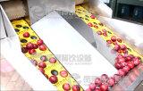 Snocciolatore verde oliva della prugna di ciliegia dell'albicocca della pesca automatica industriale, pozzo della puntinatura della prugna che rimuove macchina con il Ce diplomato