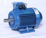 Широко используются высшего качества 22квт высокоэффективные и Enegy-Saving 3 фазы электродвигателя