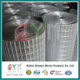 Heavy Duty Galvanized Iron Welded Wire Mesh/ Iron Wire Mesh