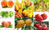2016 de Hete Industriële Machine Juicer van de Verkoop/de Industriële Trekker van het Vruchtesap