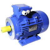 ポーランド人2 Aluminium Ie3 Electric Three Phase Induction Motor (3HMA-801-2-0.75)
