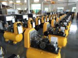 China Direct Driven Air Compressor mit WS Power