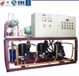 De regelmatige Eenheid van de Compressor van de Rol van de Opslag van de Koude Zaal van de Temperatuur