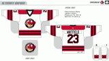 Hokey di ghiaccio americano personalizzato di Bruins 2007-2016 del Providence della Lega di Hockey dei capretti delle donne degli uomini Jersey