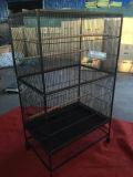 Usine de haute qualité d'alimentation grande Beautifull Bird Cage nouvelle cage de fer Wrough Degine Parrot