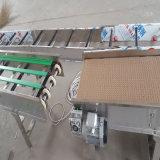 China-Fertigung-Plastikmodularer Gummibandförderer für Nahrungsmitteltransport