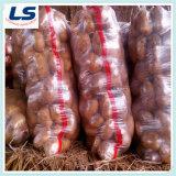 Kartoffel-Verpackungs-Ineinander greifen-Beutel