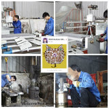 Штрангпресс пленки воздушного пузыря Ybpe (600mm 800mm) сделанный в Китае