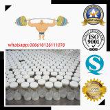 1mg Peptide saudável Fst Follistatin 344 para o edifício do músculo