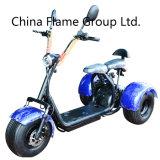 Vespa de motor de 3 ruedas con 1000W 60V/20ah