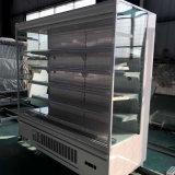 圧縮機のクーラーのタイプコンビニエンスストアの開いた前部冷却装置のプラグを差し込みなさい
