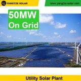 최신 판매 1000watt 3000watt 5000watt 태양 전지판