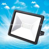 Niedriges im Freien 30W LED Flut-Licht des Verbrauchs-IP65