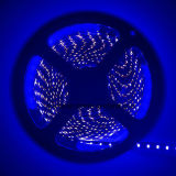 Azul SMD 3014 204LEDs / M LED Strip Lights