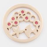 Iprg plateó monedas con joyería pendiente ajustada los elementos de la manera del Locket de la planta