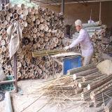 보십시오! ! ! 최고 판매 세륨에 의하여 인쇄되는 대나무 일반 관람석