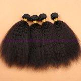 최상 인도 Virgin 사람의 모발은 Virgin 머리 길쌈 제품 Virgin 비꼬인 직모 연장을 묶는다