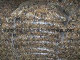 Mosaicos de pedra polida para fora o chão com cores misturadas
