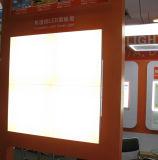 Luz de painel do diodo emissor de luz do melhor vendedor 600*600 milímetro Frameless