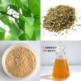 estratto del foglio di Biloba del Ginkgo (del manufact) per gli alimenti ed il supplemento